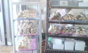 Tunggu kedatangan roti unyil di Medan (y)
